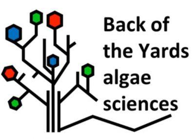 Back of the Yards Algae Sciences